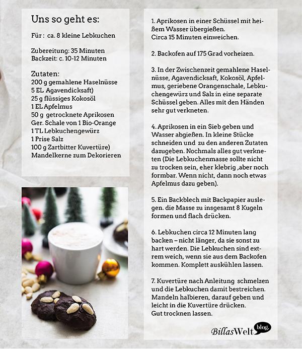 lebkuchen_glutenfrei4